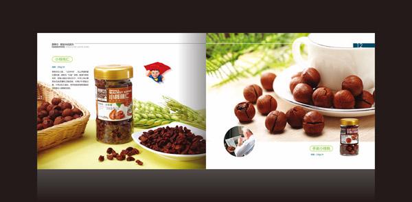 深圳画册设计 食品宣传册设计图片